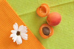 Ripe apricot and flower Stock Photography
