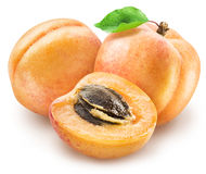 Ripe apricot fruits and apricot slice. Royalty Free Stock Images