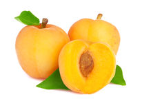 Ripe apricot isolated Stock Images