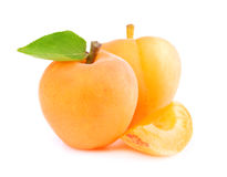 Ripe apricot isolated Stock Image
