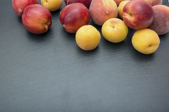 Ripe apricot and nectarine on black background of slate or stone Royalty Free Stock Photo