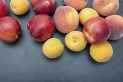 Ripe apricot and nectarine on black background of slate or stone Stock Photos