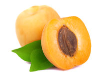 Ripe apricot  on white Royalty Free Stock Photos