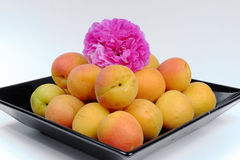 Ripe apricots on a black plate with rose Royalty Free Stock Image