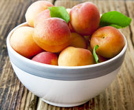 Ripe Apricots in a Bowl Stock Photo