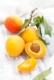 Ripe apricots. Royalty Free Stock Photography