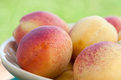 Ripe apricots close-up. Stock Photos