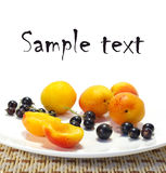 Ripe apricots and currant on a plate Stock Photos