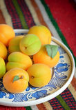 Ripe apricots fruits Stock Image