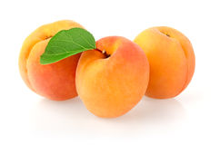 Ripe Apricots. Isolated on White Background Stock Images