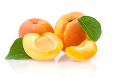 Ripe Apricots. Isolated on White Background Royalty Free Stock Photos