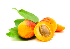 Ripe apricots isolated. Yellow ripe apricots isolated on white background stock photos