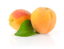 Ripe Apricots with Leaf. Isolated on White Background Royalty Free Stock Image