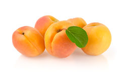Ripe Apricots with Leaf. Isolated on White Background Royalty Free Stock Photo