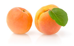 Ripe Apricots with Leaf. Isolated on White Background Royalty Free Stock Images