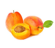 Ripe apricots with leaf isolated on a white background, with clipping path. Stock Photography