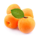 Ripe apricots with leafs Stock Image