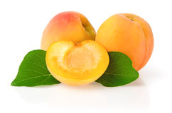 Ripe Apricots with Leaves. On White Background Royalty Free Stock Photos