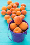 Ripe apricots in a lilac iron pail. Ripe apricots in a lilac iron bucket and scattered on colored wooden table royalty free stock photo