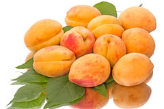 Ripe apricots with reflection Royalty Free Stock Images