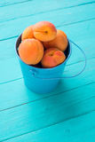 Ripe apricots in a small metal bucket. On a turquoise wooden background royalty free stock images