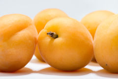 Ripe apricots on a white background Stock Images