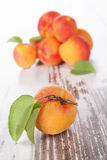 Ripe apricots. Stock Images