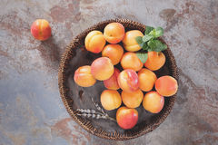 Ripe apricots in a wicker basket Royalty Free Stock Image