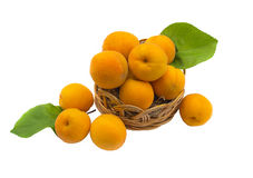 Ripe apricots in a wicker basket Stock Photography