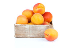 Ripe apricots in wooden box stock image