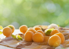Ripe apricots on wooden table with nature background Royalty Free Stock Photography
