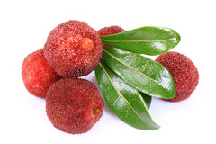 Ripe arbutus. On the white background Royalty Free Stock Images