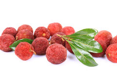 Ripe arbutus. On the white background Stock Images