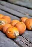 Ripe areca nut kept for drying Stock Photography