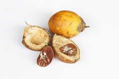 Ripe areca nuts. Or betel nuts on white background, Betel or betel nut is the fruit of the Areca catechu palm tree (a.k.a. Betel Palm royalty free stock photos