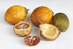 Ripe areca nuts Stock Images