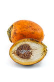 Ripe areca nuts or betel nuts Royalty Free Stock Photo