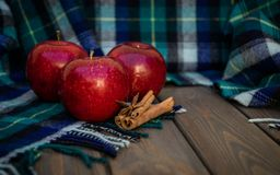 Ripe autumn apple and warm woolen scarf. Winter Spices stock image