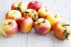 Ripe Autumn Apples Stock Photo
