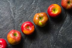 Ripe autumn apples red and yellow on a black stone background from slate. Harvesting. Vitamins are good for health. Stock Image