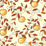 Ripe autumn apples Royalty Free Stock Photography