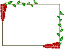 Ripe Autumn Cranberries Square Frame. For your design project Royalty Free Stock Photos