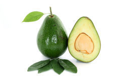 Ripe avacado isolated on white Stock Image