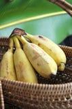 Ripe banana in basket Stock Photos