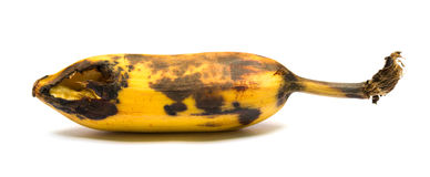 Ripe banana bited by insect Stock Images