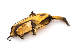 Ripe banana bited by insect on white Royalty Free Stock Images