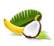 Ripe banana and coconut isolated Stock Images