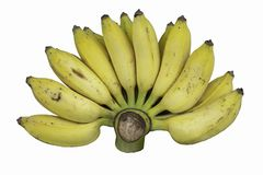 Ripe banana Cooked eat on white background royalty free stock image