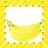 Ripe banana fruit Stock Photos
