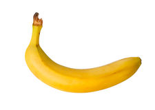 Banana Royalty Free Stock Photography